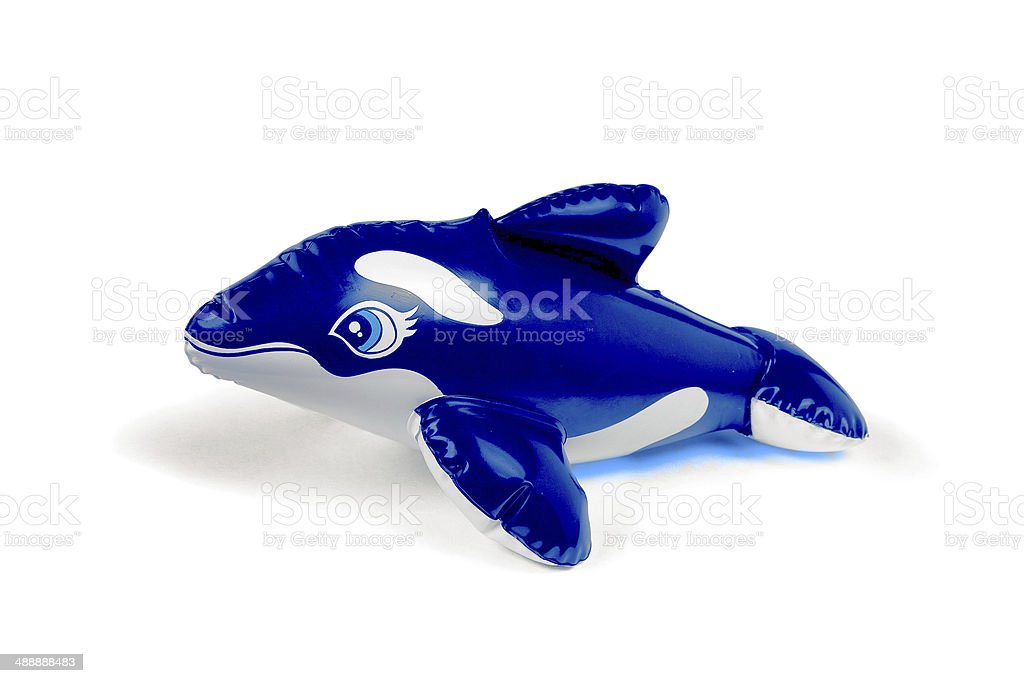 blue and white toy dolphin stock photo
