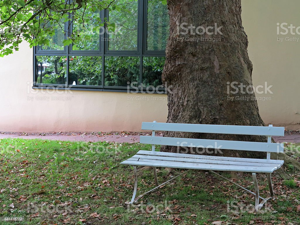 Blue bench against a tree stock photo