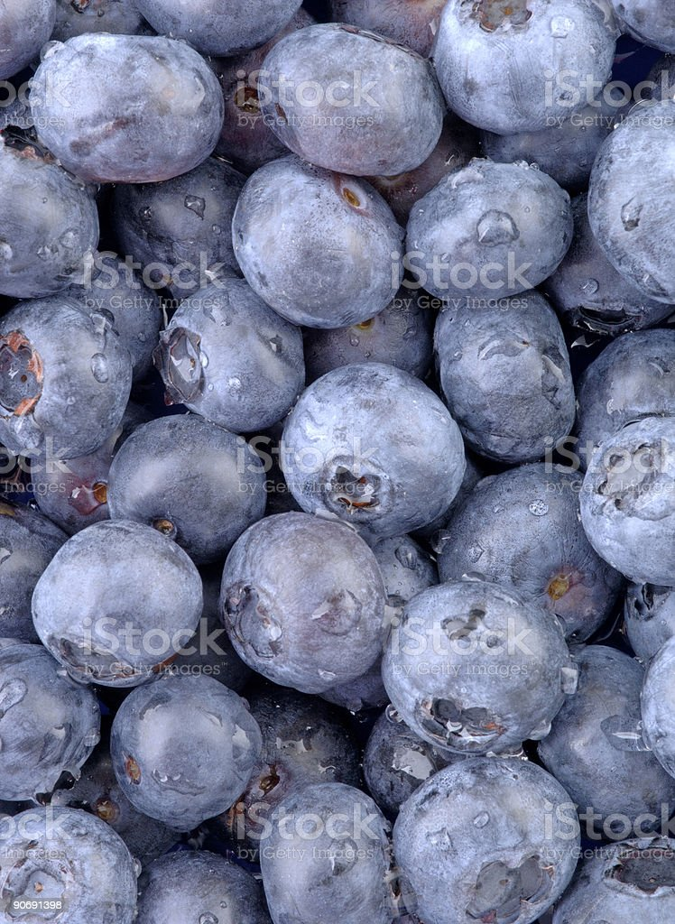 Blue Blueberry-Vertical royalty-free stock photo
