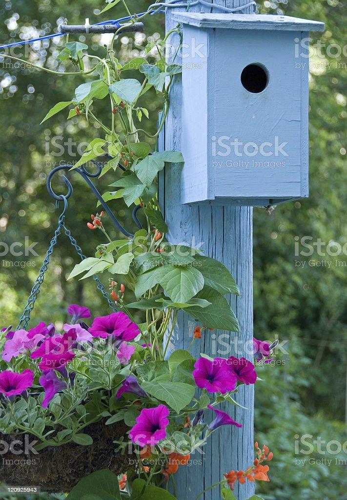 Blue Bluebird Nest Box and Flowers stock photo