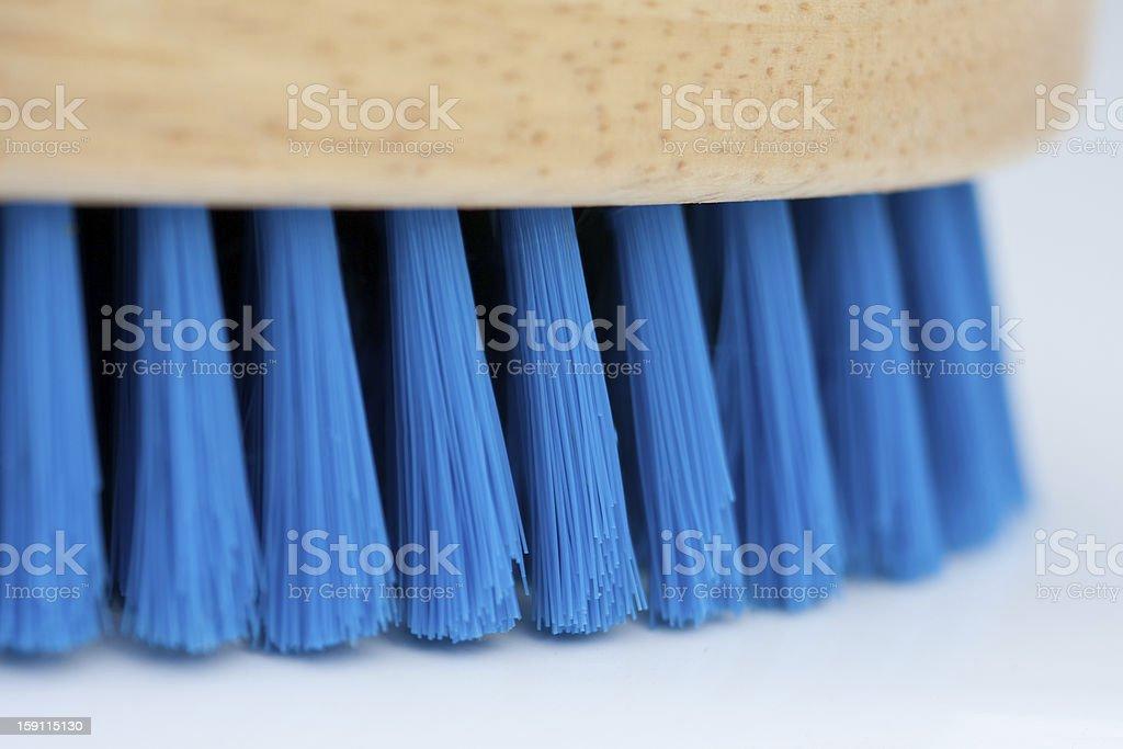 Blue Brush stock photo