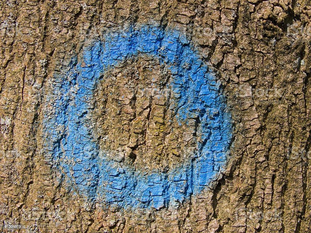 Blue circle royalty-free stock photo