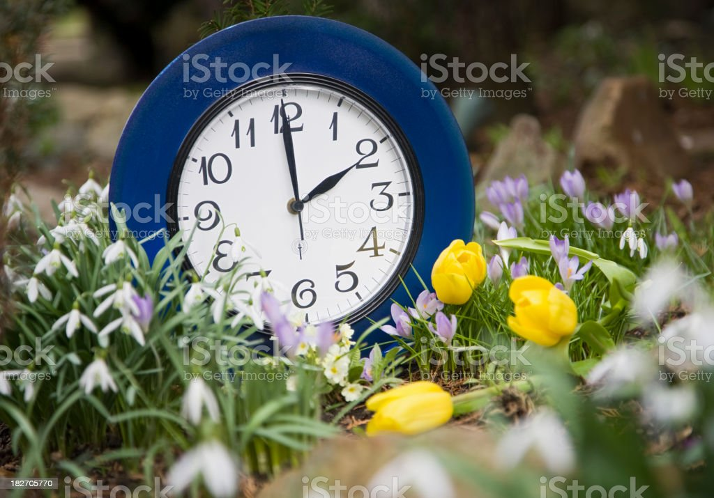 Blue clock in the middle of flower garden summer time stock photo