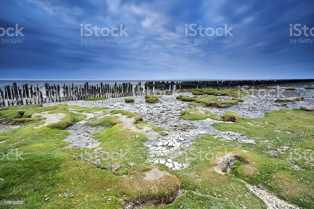 blue clouded sky over coast mud at low tide stock photo