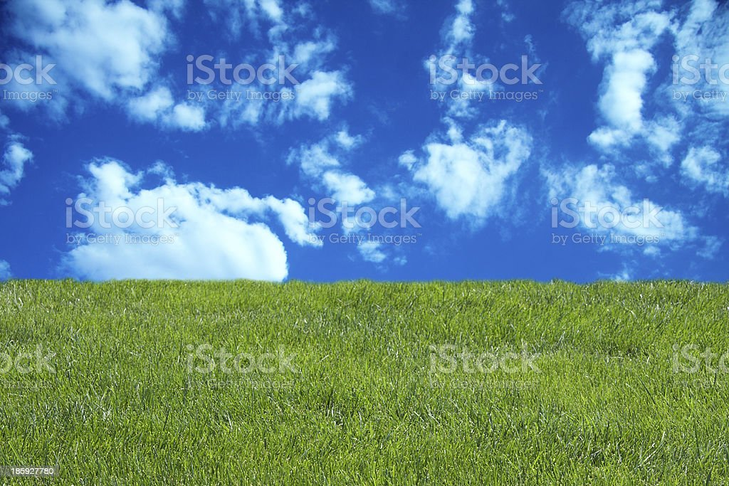 blue cloudy sky and green grass stock photo