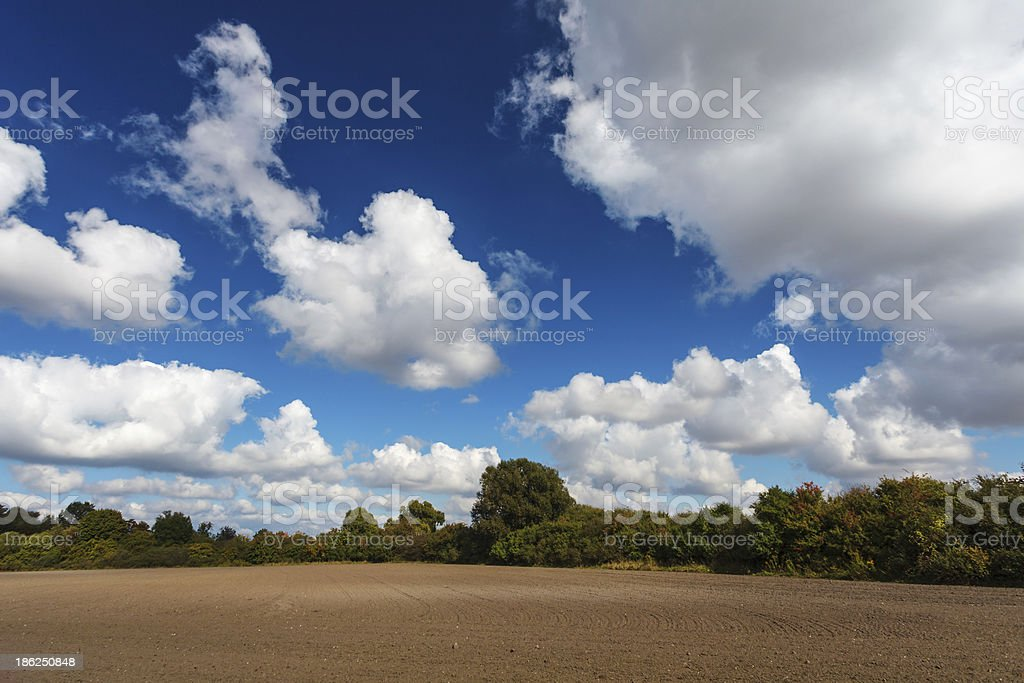 Blue cloudy sky over plowed field royalty-free stock photo
