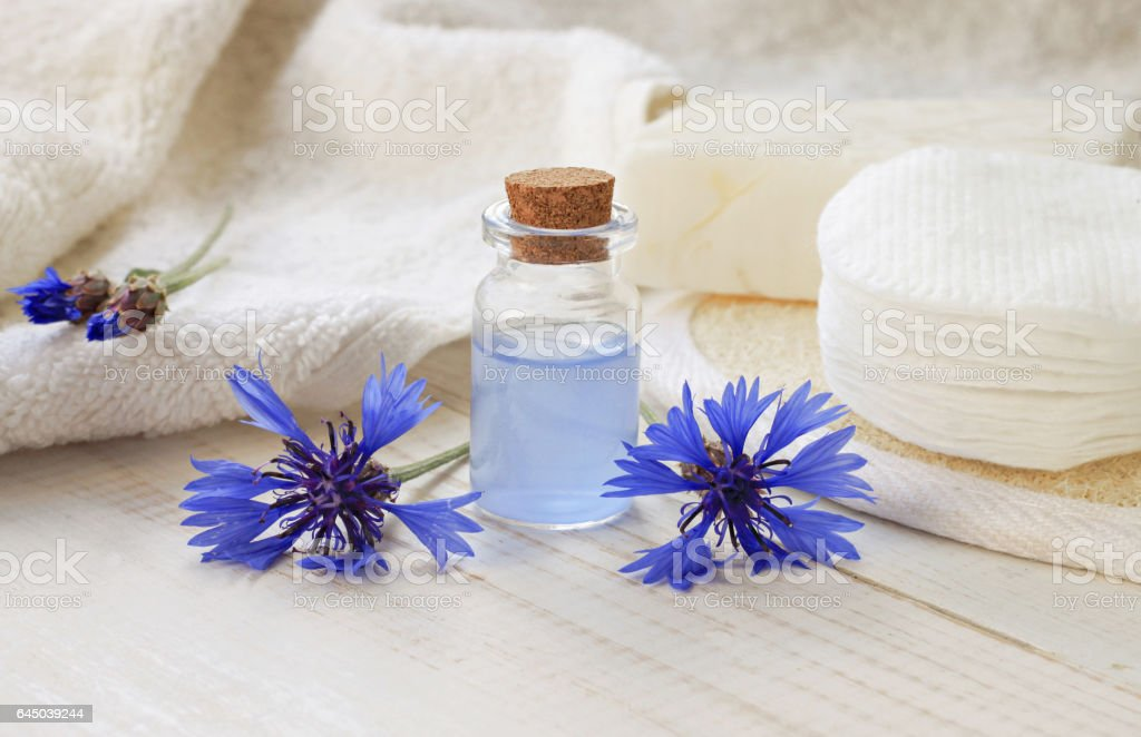 Blue cornflower herbal extract stock photo
