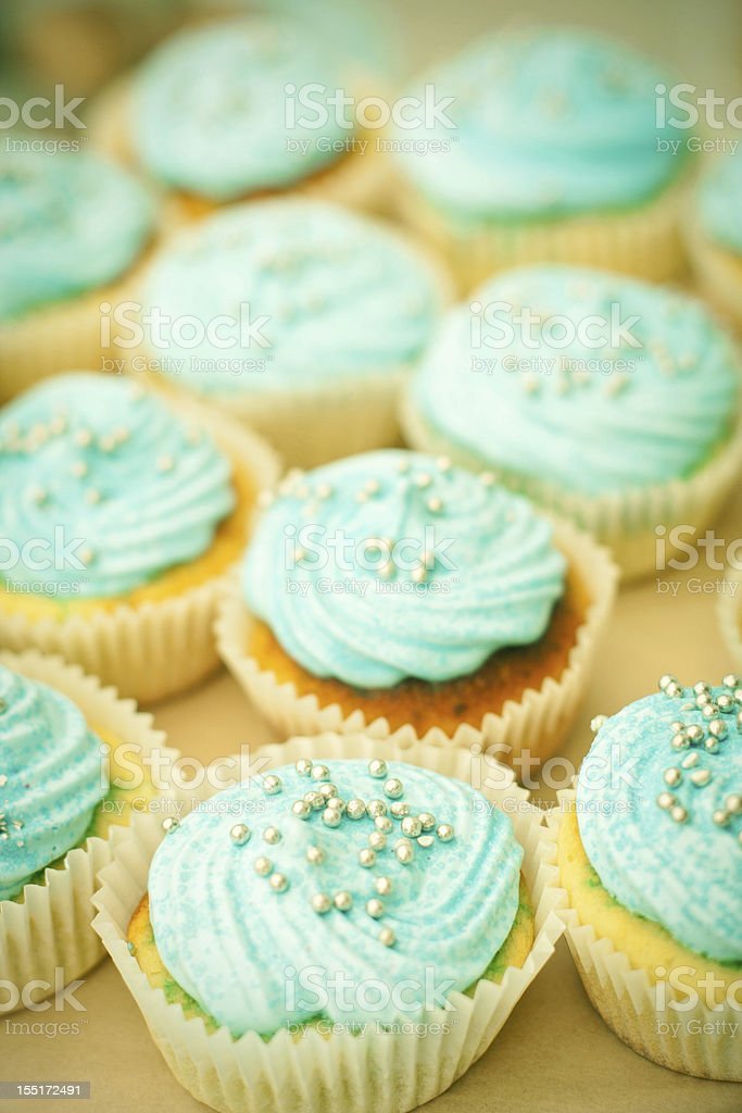 blue cupcakes royalty-free stock photo