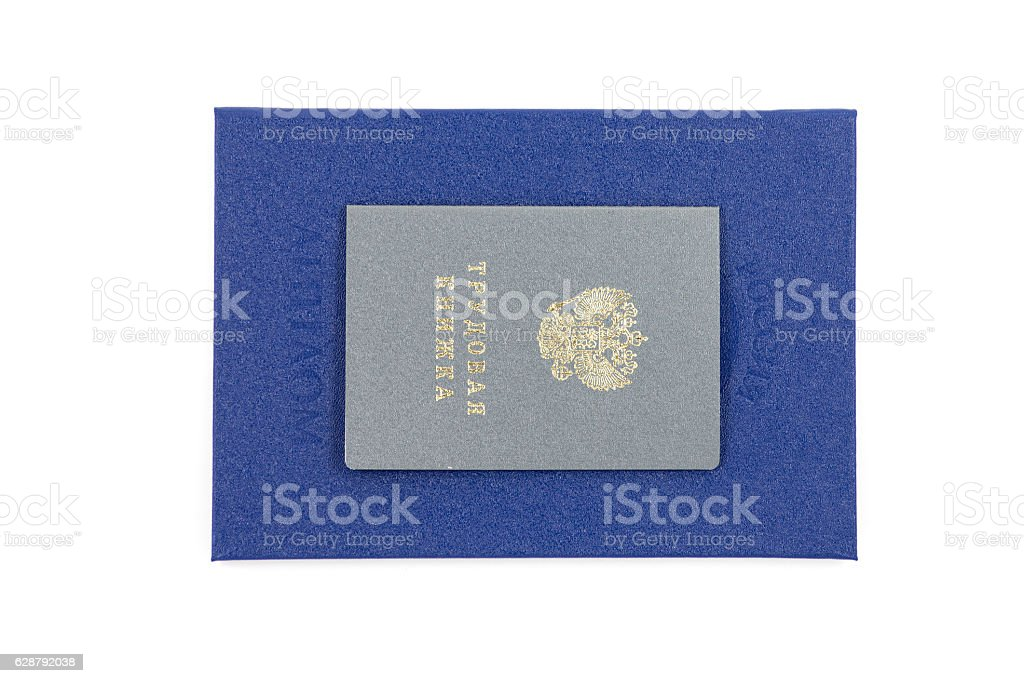 Blue diploma of higher education and employment history stock photo