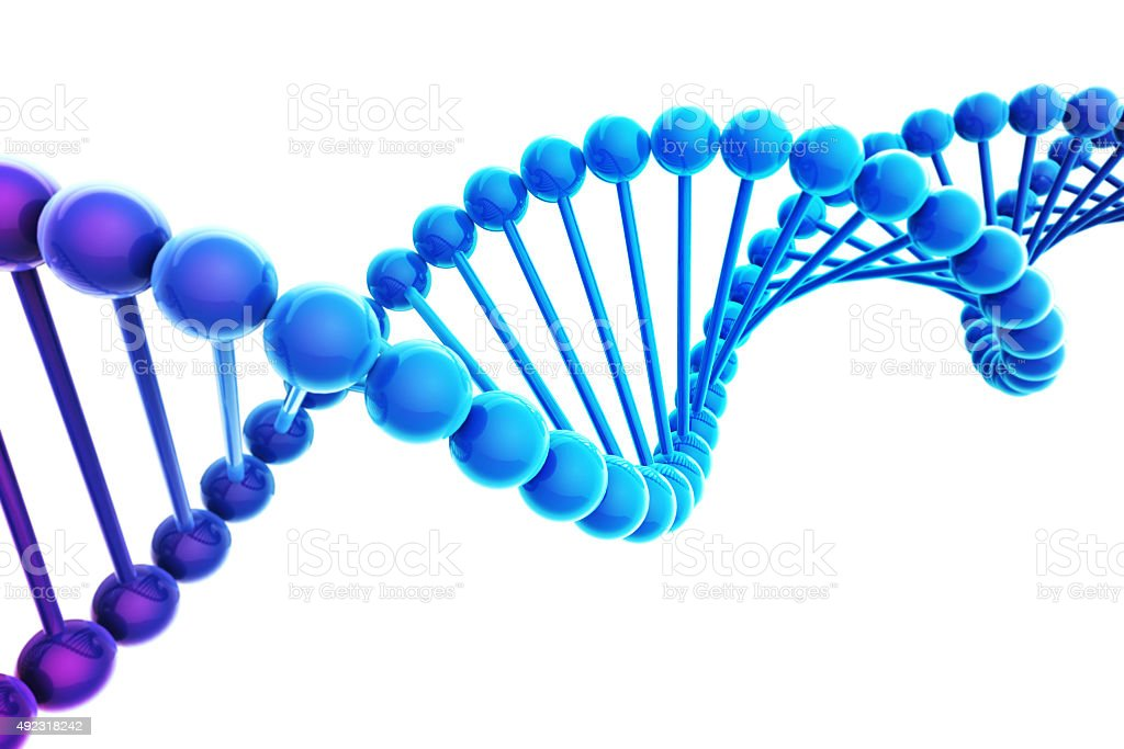 Blue DNA Helix on white background stock photo