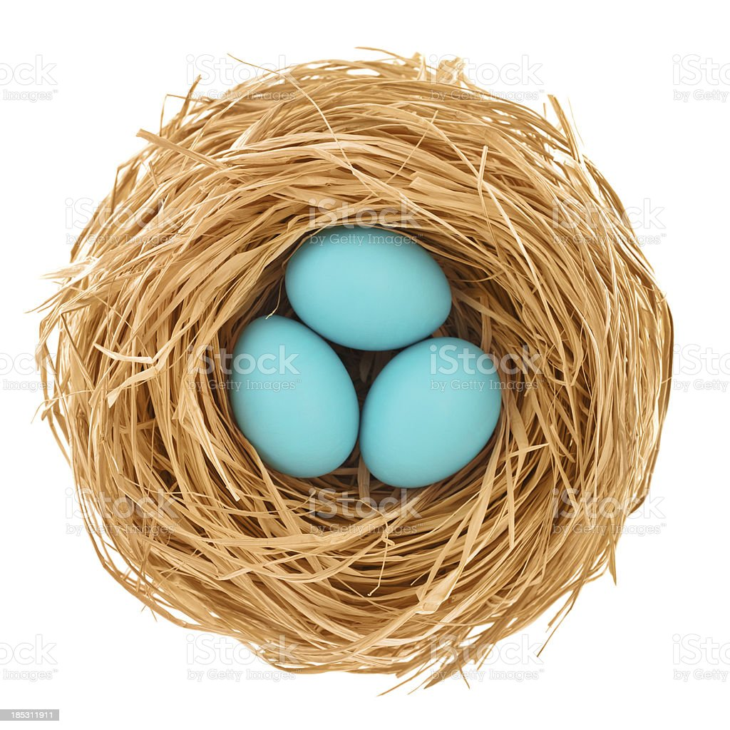 Blue easter eggs from directly above stock photo