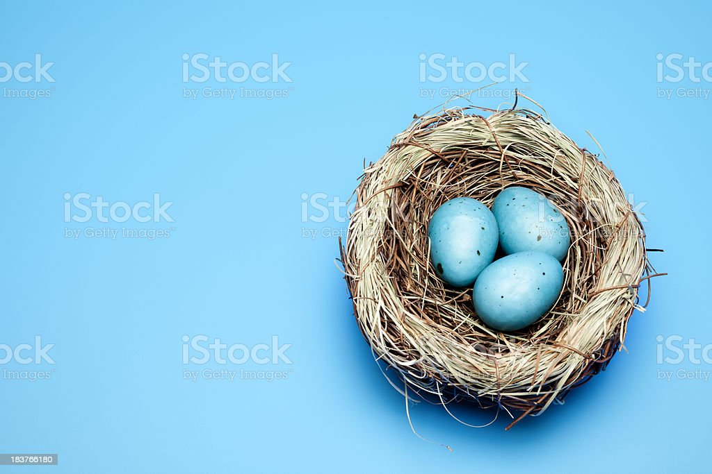 blue easter eggs royalty-free stock photo