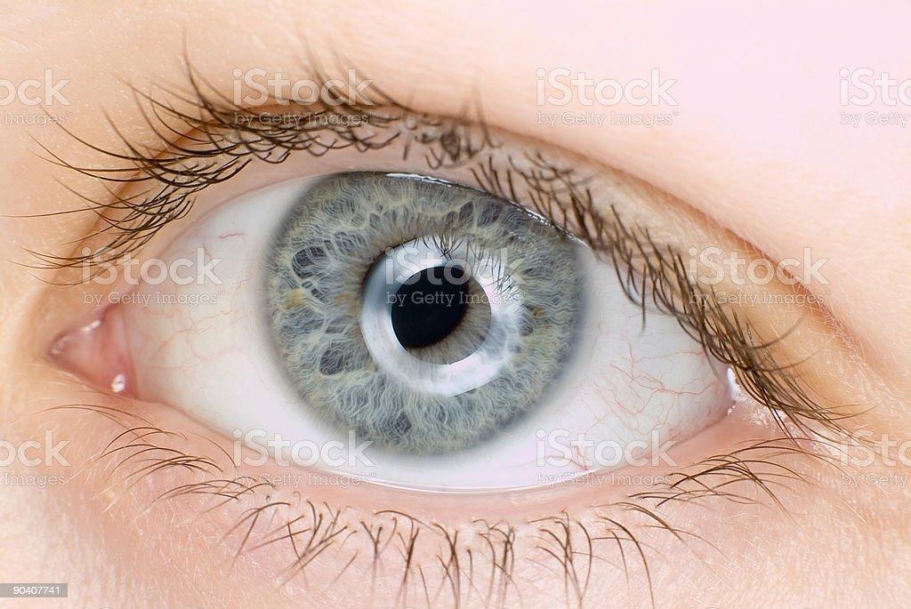 blue eye in macro royalty-free stock photo