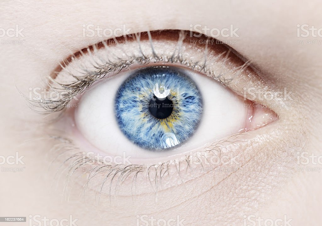 blue eye macro stock photo