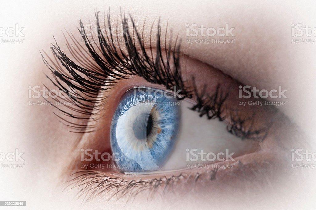 Blue eye vector art illustration