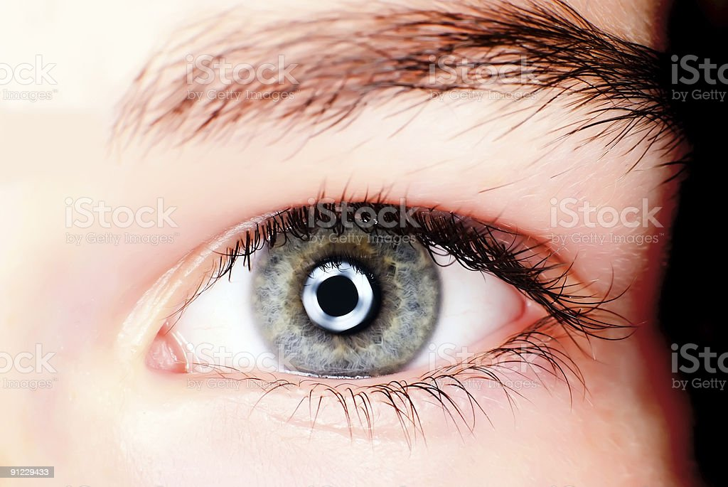 Blue eye shot in macro with ring flash royalty-free stock photo