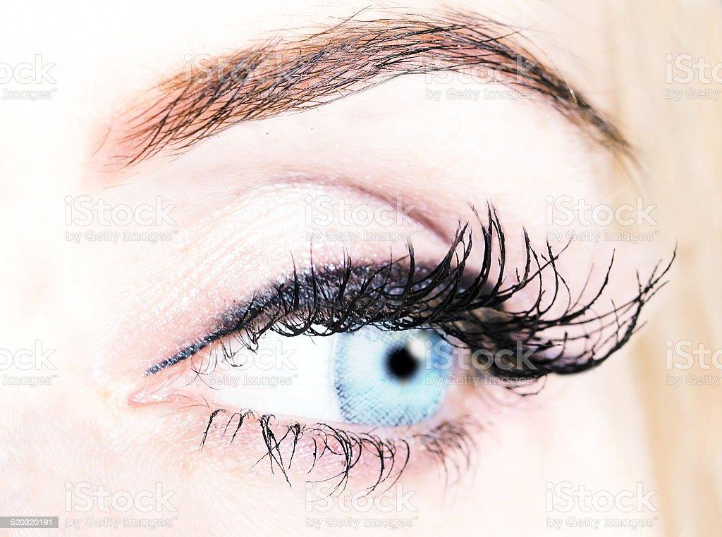 blue eye with long bushy eyelashes stock photo