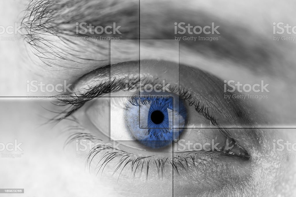 Blue eye with virtual hologram. stock photo