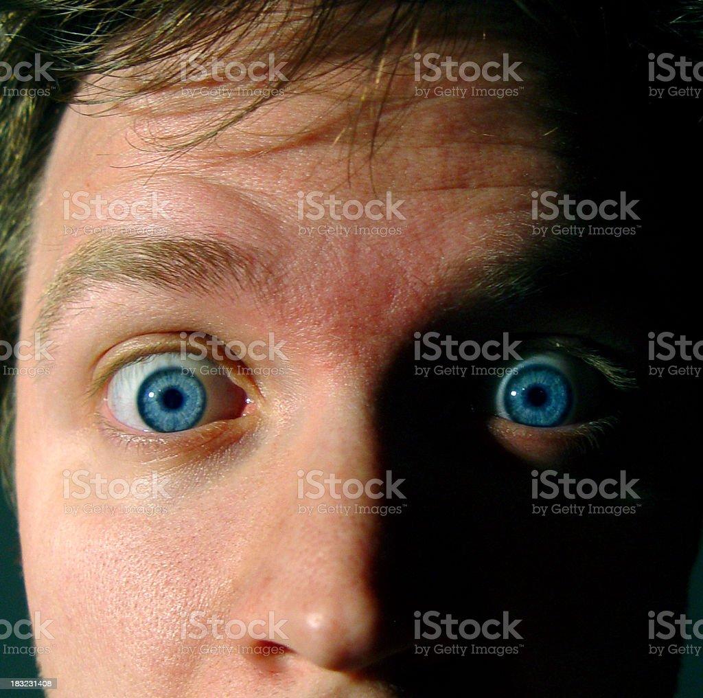 Blue Eyed Surprise royalty-free stock photo