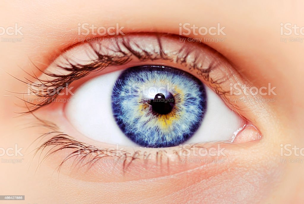 blue eyes macro stock photo