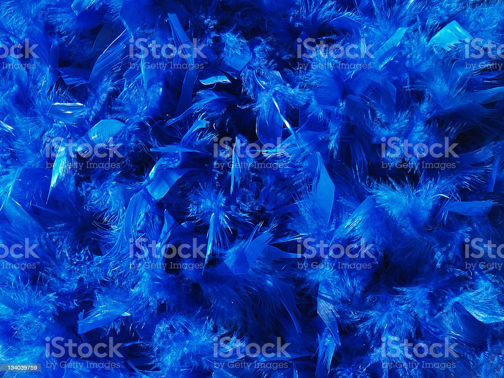 Blue Feather Background royalty-free stock photo