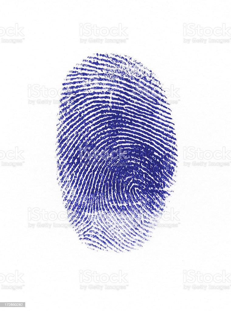 Blue fingerprint stock photo