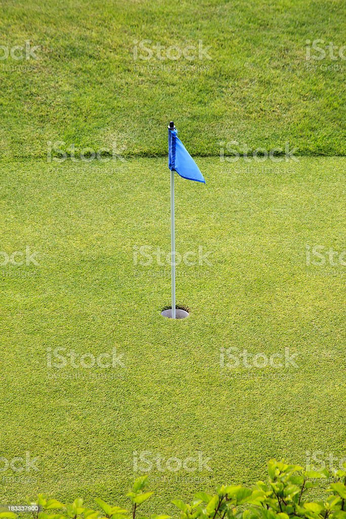 Blue Flag on Golf Putting Green royalty-free stock photo