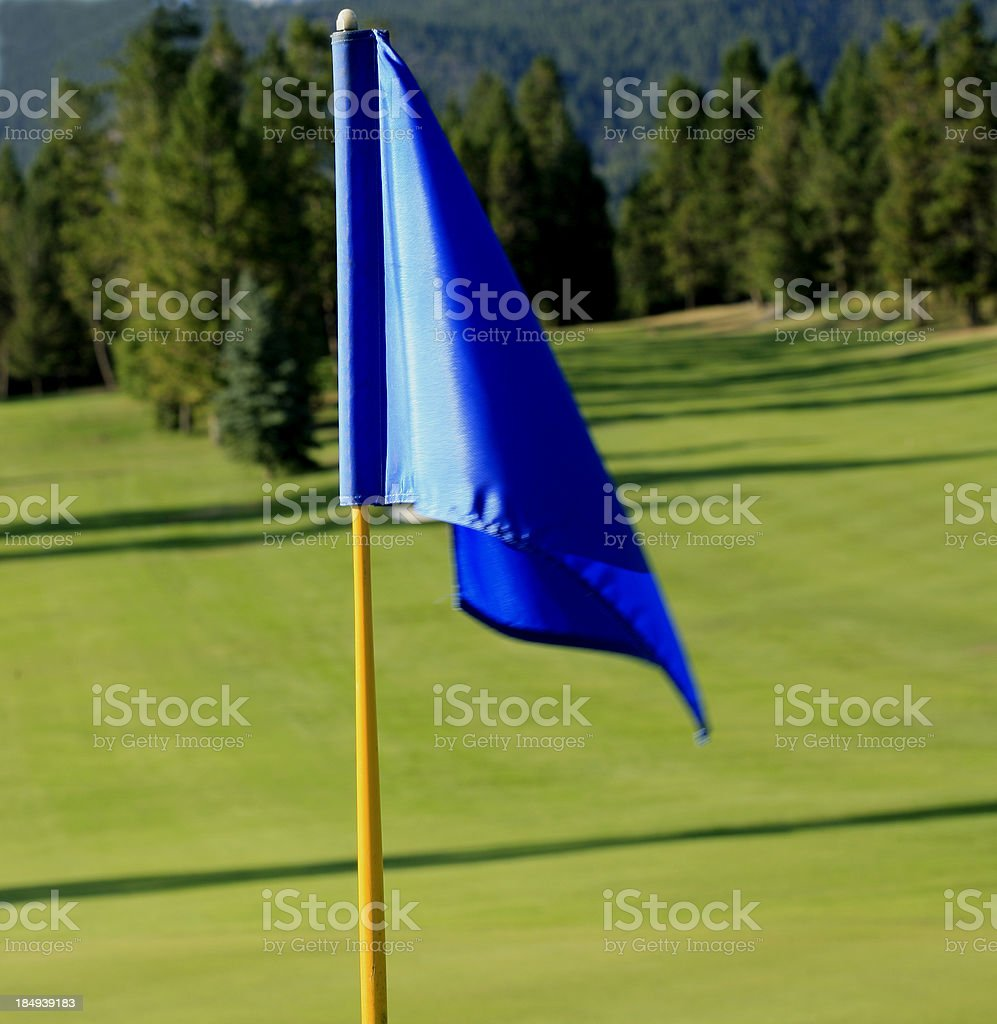 Blue Flag on The Golf Green royalty-free stock photo