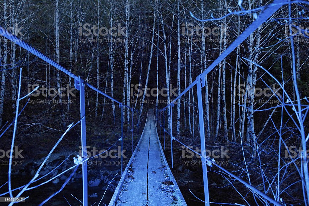 Blue Forest stock photo