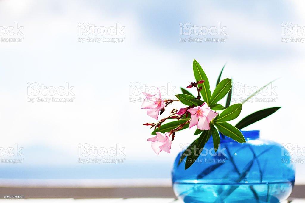 Blue Glass Vase, Oleander Flowers, Dreamy Seascape Background stock photo
