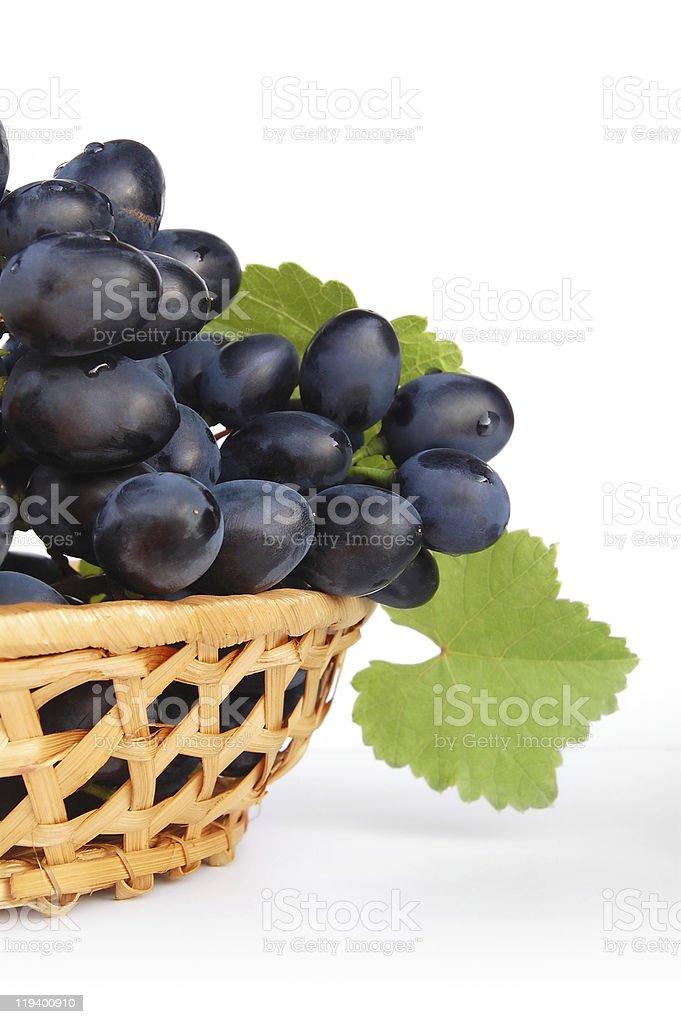 Blue grapes stock photo