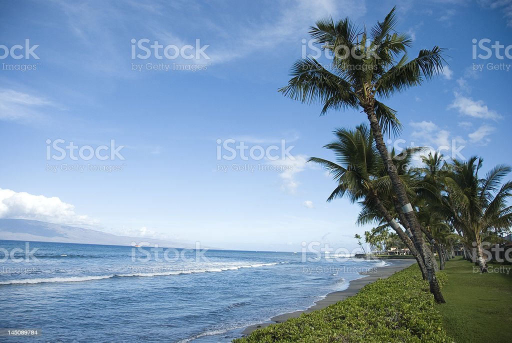 Blue Hawaiian coast. stock photo