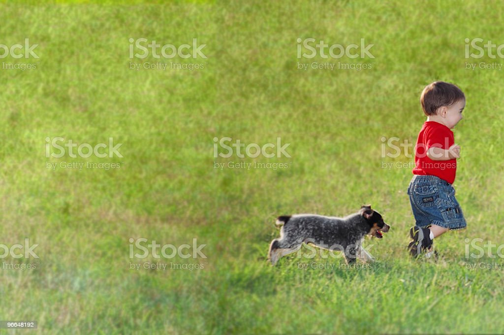 Blue Heeler Pup Chasing a Small Boy royalty-free stock photo