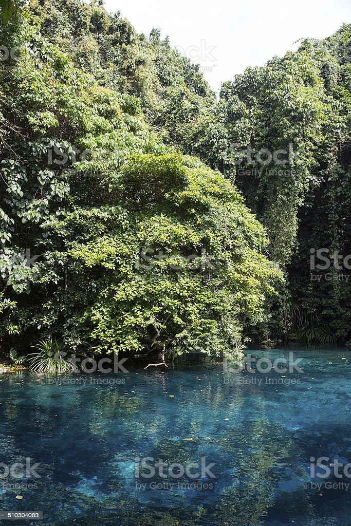 Blue Hole, Vanuatu stock photo