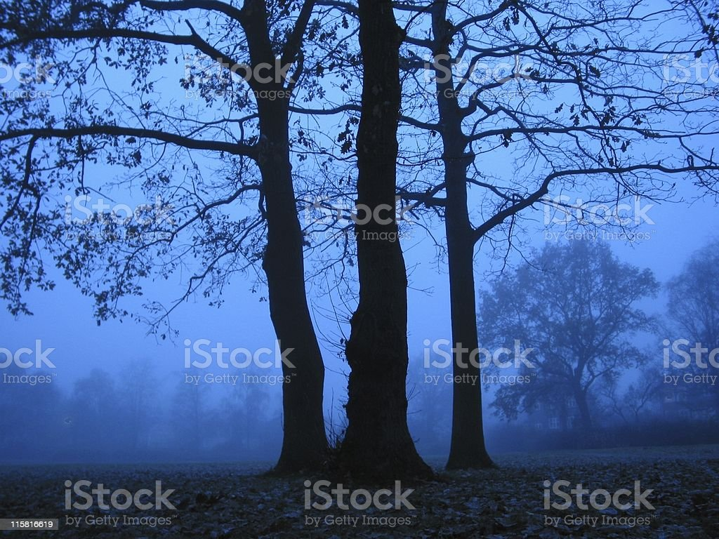 Blue Hour royalty-free stock photo