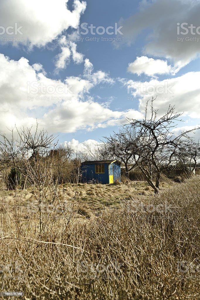 Blue hut in a wild garden stock photo