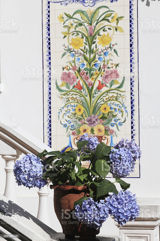 blue hydrangea infront of colored tiles stock photo