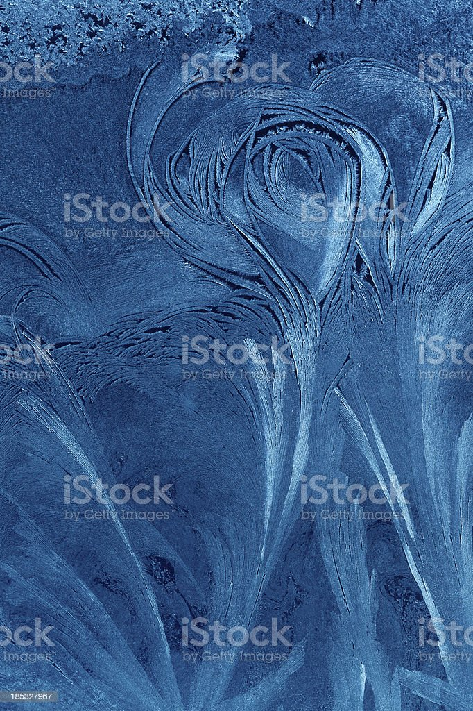 blue ice flower background stock photo