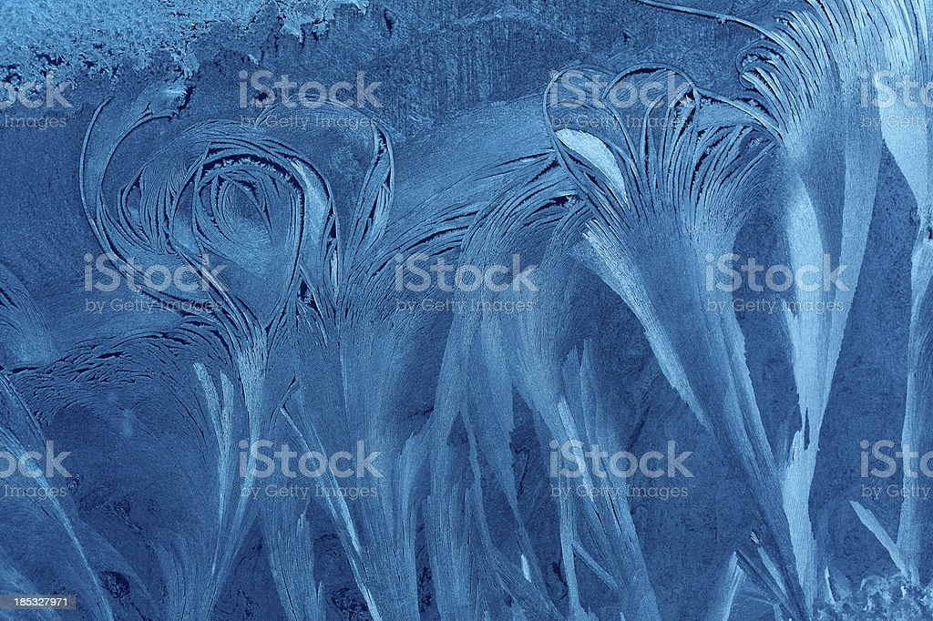 blue ice flower background royalty-free stock photo