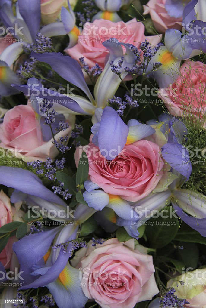 Blue irises and pink roses in bridal arrangement royalty-free stock photo