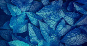 blue leaves  texture background