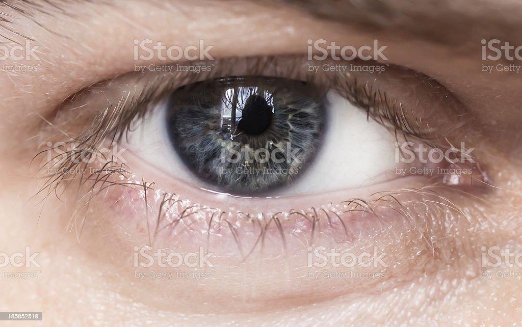 Blue man eye. royalty-free stock photo