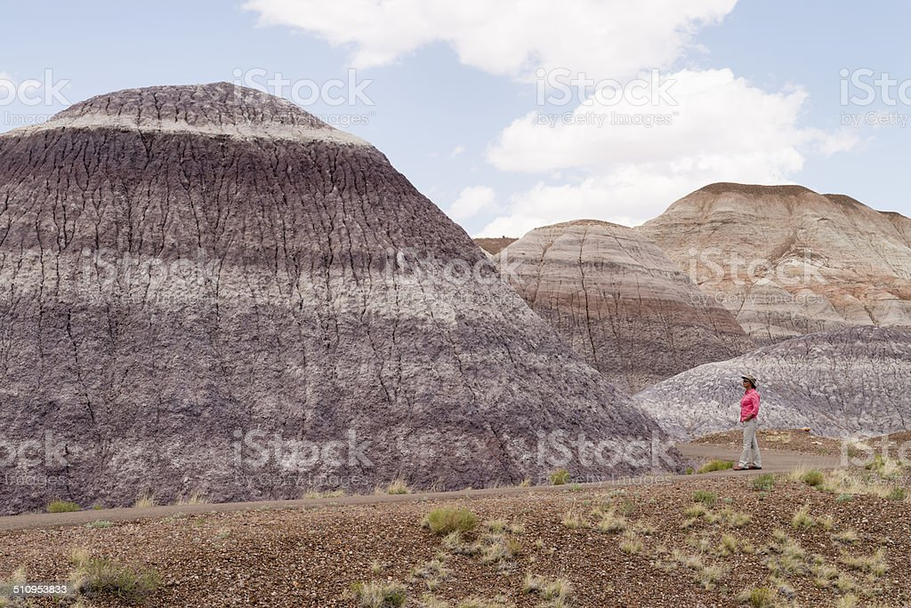 Blue Mesa at Petrified Forest National Park stock photo