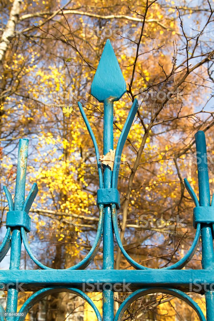 Blue metal fence with a single leaf stock photo
