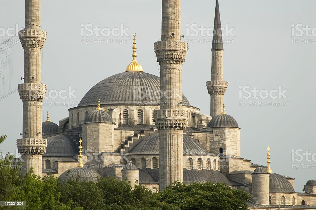 Blue Mosque / Istanbul royalty-free stock photo