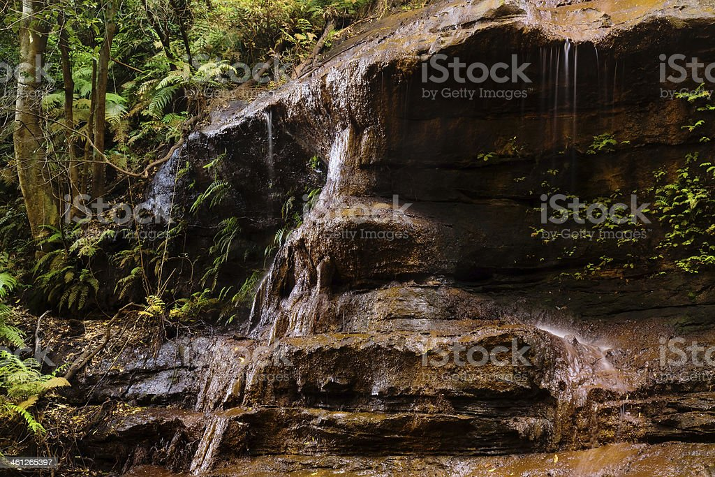 Blue Mountains Waterfall - Witches Leap stock photo