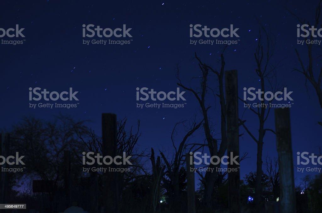 Blue night stock photo