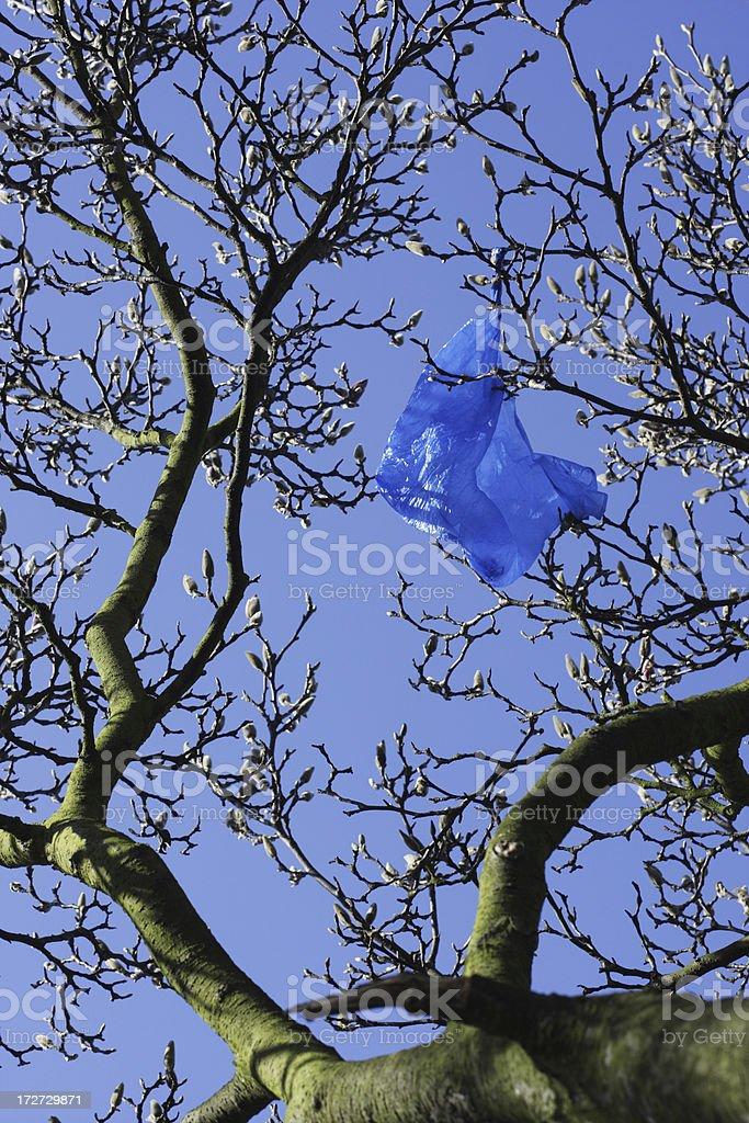 Blue plastic bag in tree environmental problem royalty-free stock photo