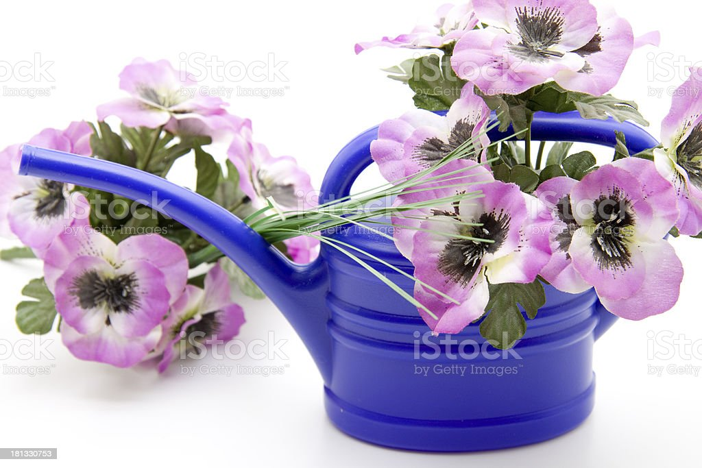 Blue plastic watering can with floral decoration stock photo