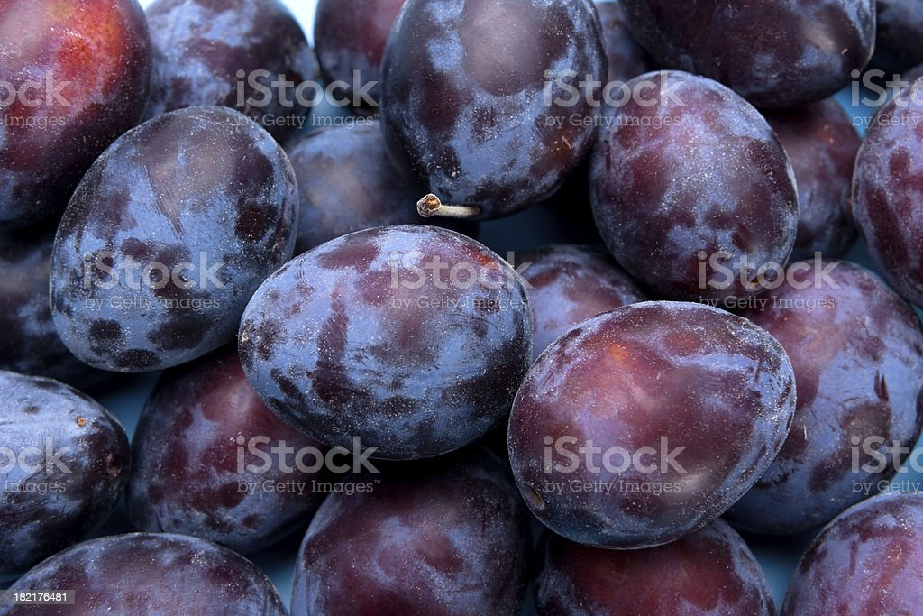 Blue plums stock photo